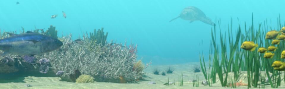 Ausschnitt Unterwasser Our Nature fertiges Fusion Compositing